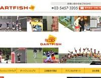 2011_dartfish